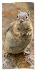Grumpy Squirrel Hand Towel by Chris Scroggins