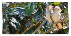 Hand Towel featuring the photograph Guira Cuckoo by Donna Brown