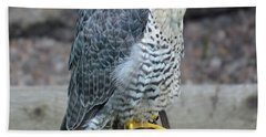 Gyr Falcon Bath Towel