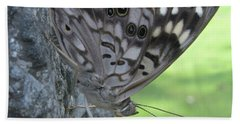 Hackberry Emperor Butterfly Hand Towel by Donna Brown