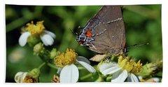 Hairstreak Butterfly Hand Towel