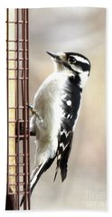 Hairy Woodpecker Hand Towel
