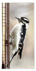 Hairy Woodpecker Hand Towel