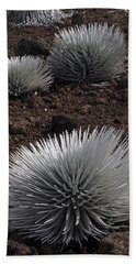 Haleakala Silverswords Bath Towel