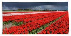 Half Side Red Tulips Field Hand Towel by Mihaela Pater
