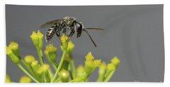 Hand Towel featuring the photograph Halictid Bee - Lasioglossum Discum by Jivko Nakev