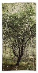 Hand Of God Apple Tree Poster Hand Towel