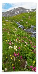 Handie's Peak And Alpine Meadow Hand Towel