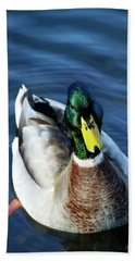 Handsome Male Mallard Bath Towel