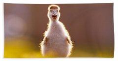 Happy Easter - Cute Baby Gosling Hand Towel