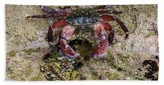 Happy Little Crab Hand Towel
