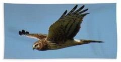 Harrier In Flight Bath Towel