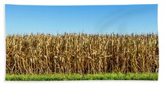 Hand Towel featuring the photograph Harvest Time by Ricky L Jones