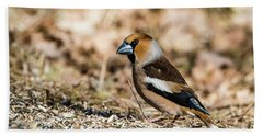 Bath Towel featuring the photograph Hawfinch's Gaze by Torbjorn Swenelius