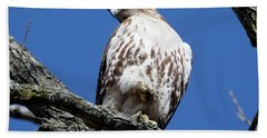 Hawk 2 Bath Towel