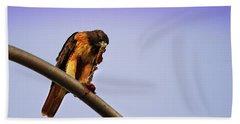 Hawk Eating Bath Towel