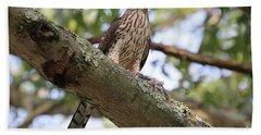 Hawk On A Branch Hand Towel