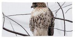 Hawk On Alert Hand Towel