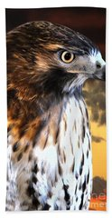 Hand Towel featuring the photograph Hawk Sunset by Adam Olsen