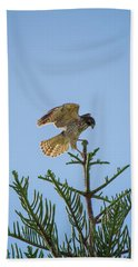 Hawk With Regal Landing Hand Towel