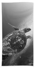 Hawksbill Turtle Ascending Hand Towel