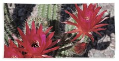 Hedgehog Cactus Bath Towel