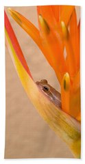 Heliconia And Frog Hand Towel