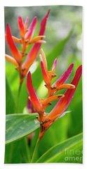 Heliconia Psittacorum Hand Towel