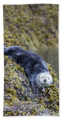 Hello Sea Otter Bath Towel by Chris Scroggins