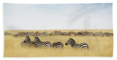 Herd Of Zebra In Tall Grass Of Kenya Africa Hand Towel