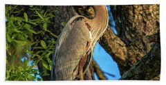 Heron In The Pine Tree Hand Towel