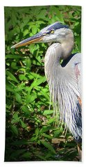 Hand Towel featuring the digital art Blue Heron With An Attitude by Kathy Kelly