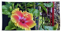 Hibiscus Bloom By The Red Trellis Bath Towel