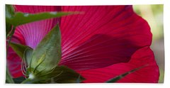 Bath Towel featuring the photograph Hibiscus by Charles Harden