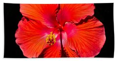 Hibiscus Flower Hand Towel by Kenneth Cole