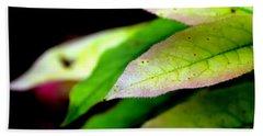 Hickory Leaf Hand Towel