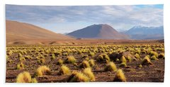 High Altitude Vegetation And Foothills Of The Andes Mountains Bath Towel