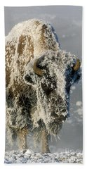 Hoarfrosted Bison In Yellowstone Hand Towel