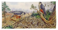 Hobbys At Their Nest Hand Towel by Carl Donner