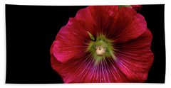 Hollyhock On Black Bath Towel by Aliceann Carlton