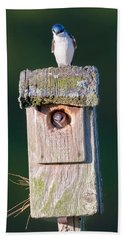 Home Hand Towel by Bill Wakeley