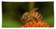 Honey Bee On Flower Three Bath Towel by Randy Steele