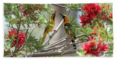 Hand Towel featuring the photograph 16x20 Canvas - Hooded Orioles by Tam Ryan