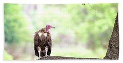 Hooded Vulture Hand Towel