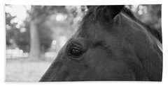 Horse At Fence Hand Towel
