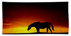 Horse At Sunset Hand Towel