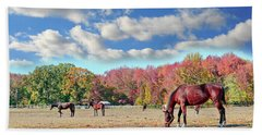 Horses Grazing At A Stable In Maryland Hand Towel