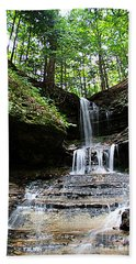 Horseshoe Falls #6736 Hand Towel by Mark J Seefeldt