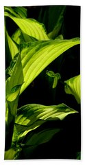 Hosta 561 Bath Towel