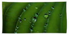 Hostas And Raindrops Hand Towel